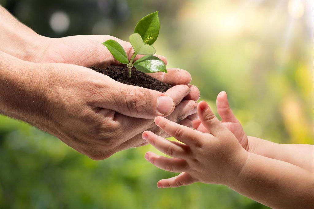 Qué debes saber en el Día Mundial del Medio Ambiente