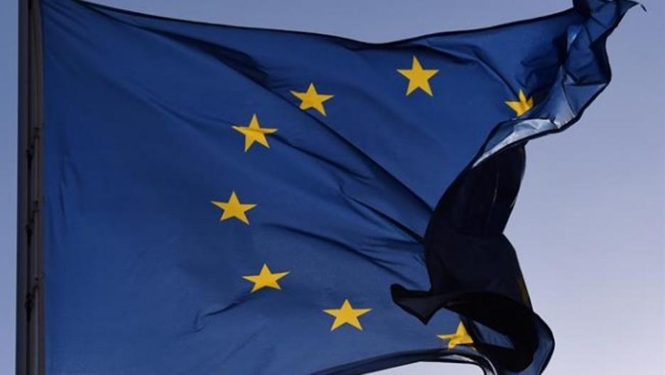 Unión Europea a la cabeza de la sanidad animal en el mundo