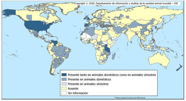 Distribución mundial de TBC Bovina 2017 y primer semestre 2018. Fuente OIE